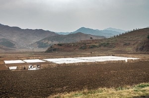 Nordkorea-0979-Bearbeitet-Bearbeitet