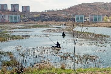 Reisfelder, Nampo, Nordkorea